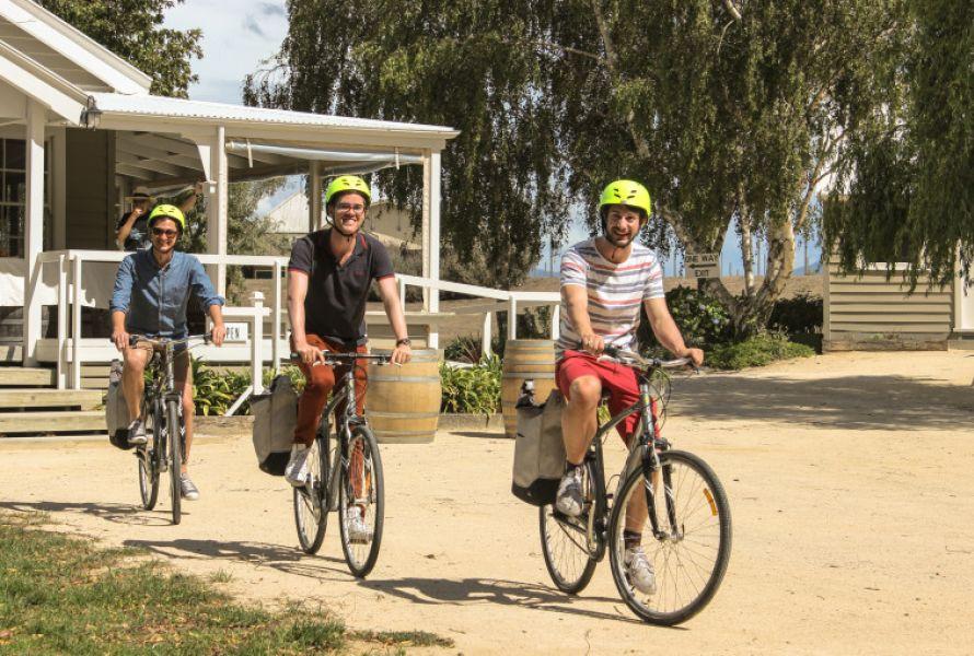 Martinborough Cycling Tour